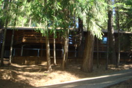7159 Pine Cone Drive, Pollock Pines